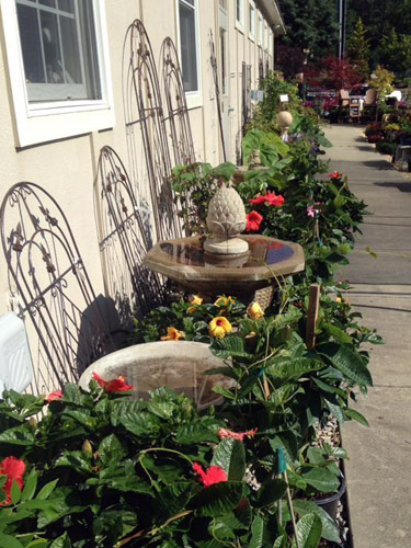 fountains, birdbaths and trellises with hibiscus bushes