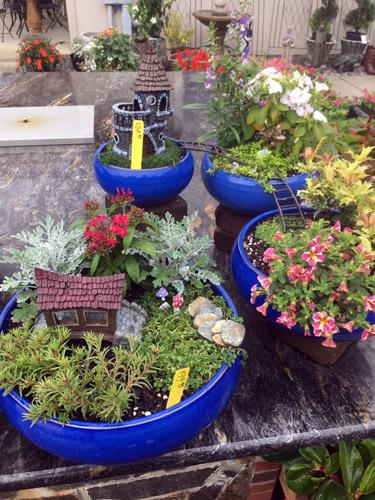 fairy garden plants accessories