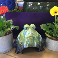 cute pottery frog