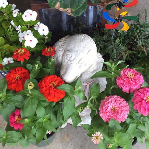 dog statue flowers