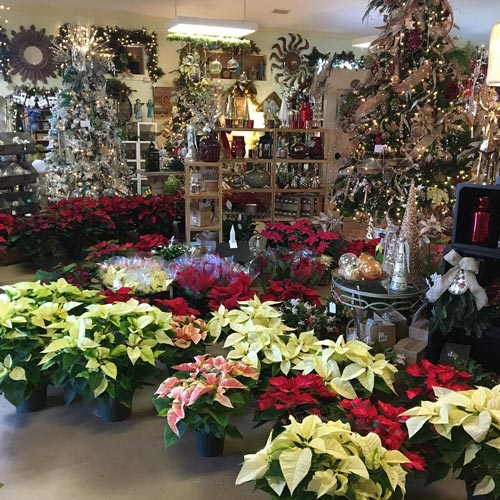 poinsettias christmas decor decorations