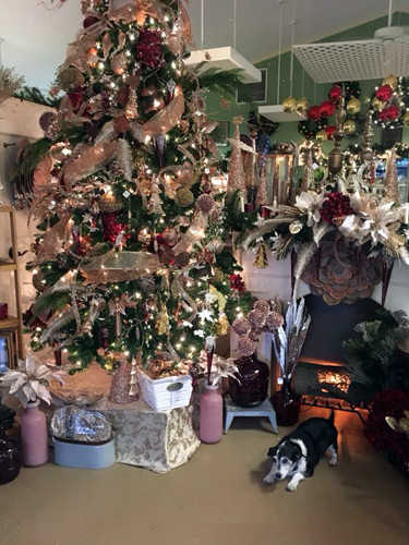 Holiday shop with Christmas tree, ornaments, decorations, and Bayleaf dog